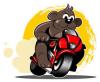 Ali-bear